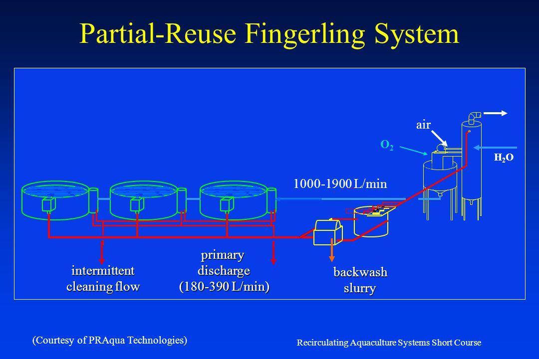 Recirculating Aquaculture Systems Short Course Quantity – Partial-Reuse Systems Partial-reuse Systems Circulation Production Tanks – Swirl Separators