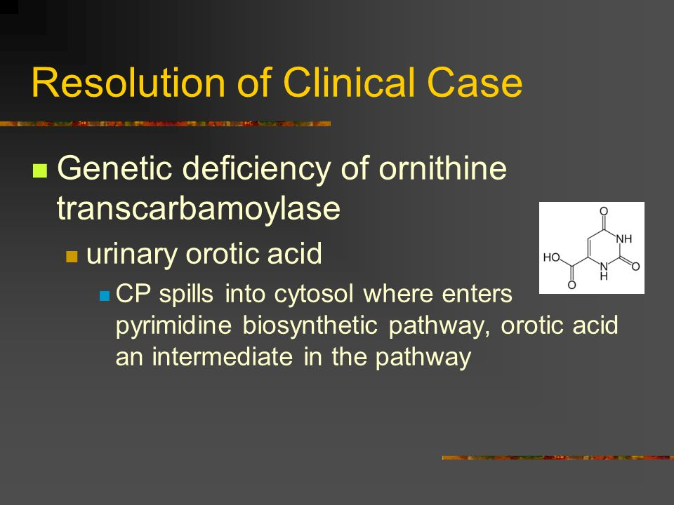 Resolution of Clinical Case Genetic deficiency of ornithine transcarbamoylase urinary orotic acid CP spills into cytosol where enters pyrimidine biosy