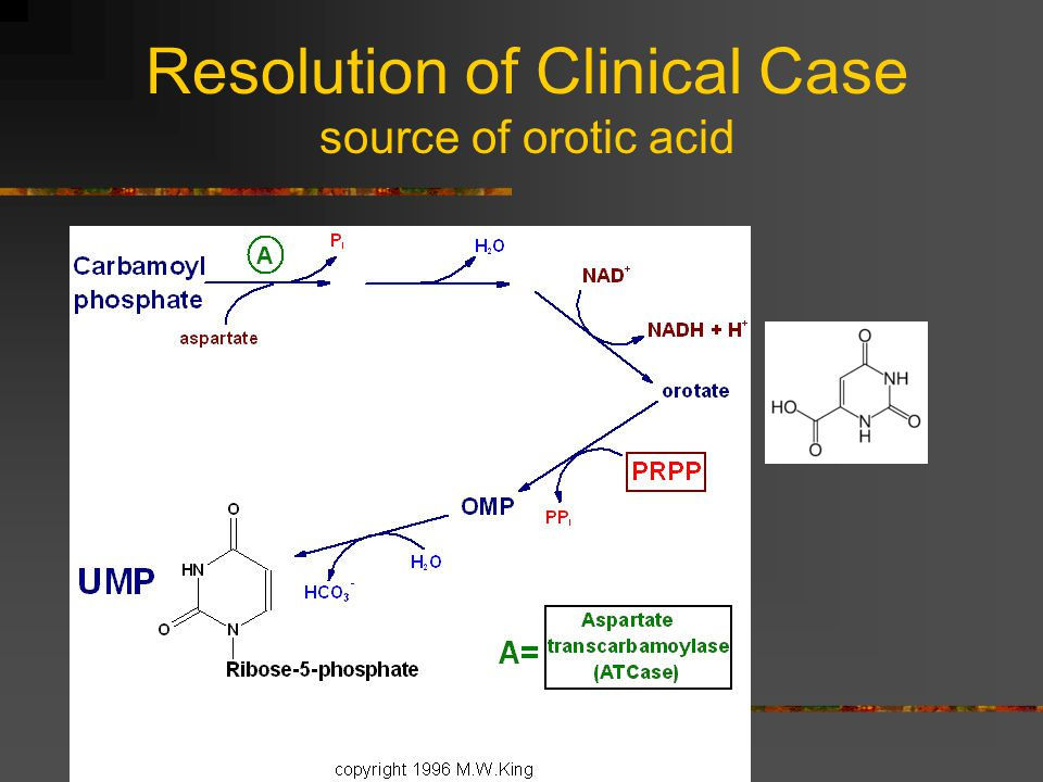 Resolution of Clinical Case source of orotic acid