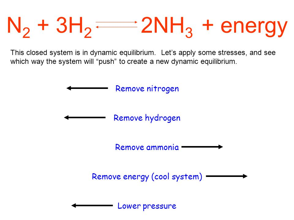 N 2 + 3H 2 2NH 3 + energy This closed system is in dynamic equilibrium.