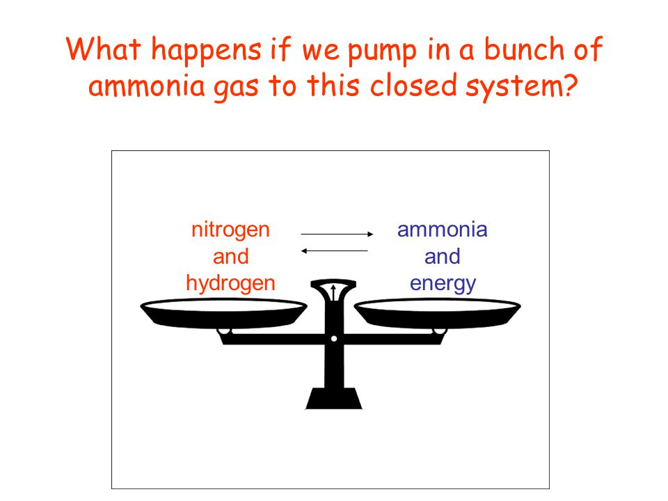 nitrogen and hydrogen ammonia and energy What happens if we pump in a bunch of ammonia gas to this closed system?