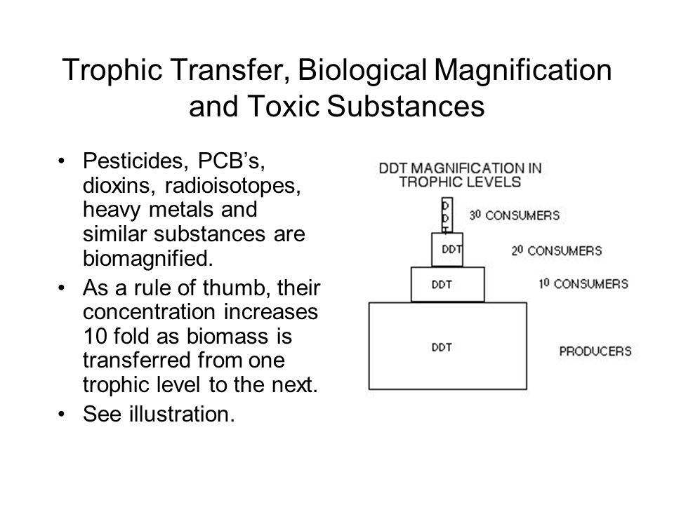 Trophic Transfer, Biological Magnification and Toxic Substances Pesticides, PCB's, dioxins, radioisotopes, heavy metals and similar substances are bio