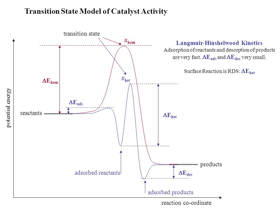 Transition State Model of Catalyst Activity reactants products  E hom potential energy  E ads  E des  E het reaction co-ordinate Langmuir-Hinshelw