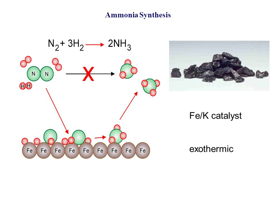 Ammonia Synthesis Fe/K catalyst exothermic