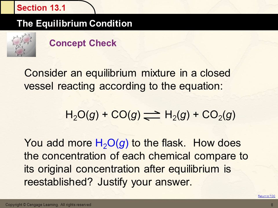 Section 13.1 The Equilibrium Condition Return to TOC Copyright © Cengage Learning. All rights reserved 8 Concept Check Consider an equilibrium mixture