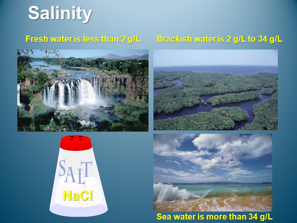 Salinity Fresh water is less than 2 g/L Brackish water is 2 g/L to 34 g/L Sea water is more than 34 g/L NaCl