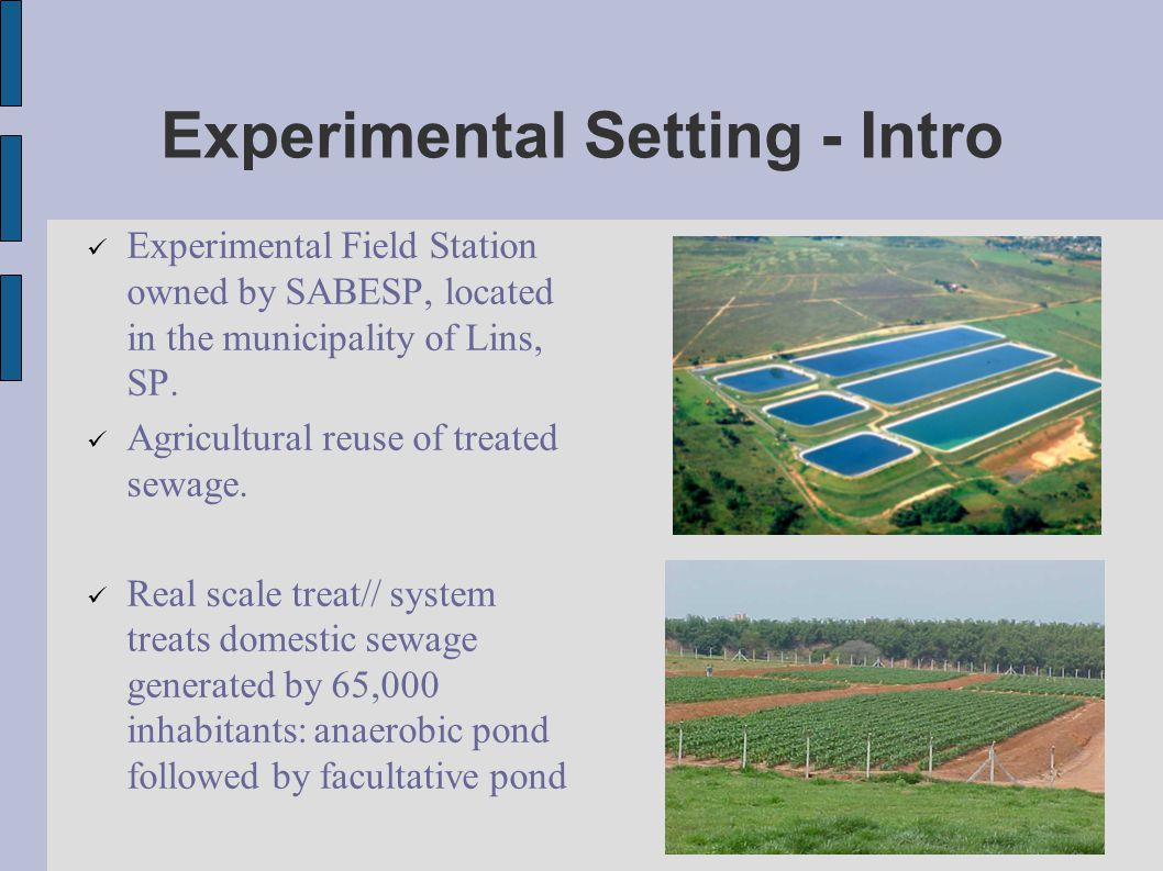 Experimental Setting - Intro Experimental Field Station owned by SABESP, located in the municipality of Lins, SP.