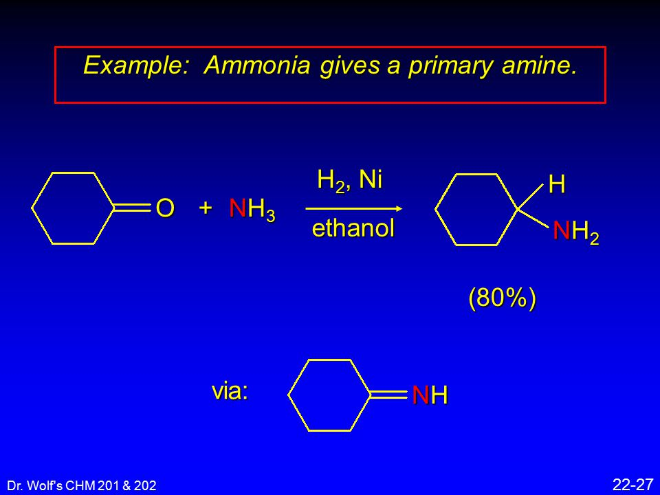 Dr. Wolf s CHM 201 & 202 22-27 Example: Ammonia gives a primary amine.