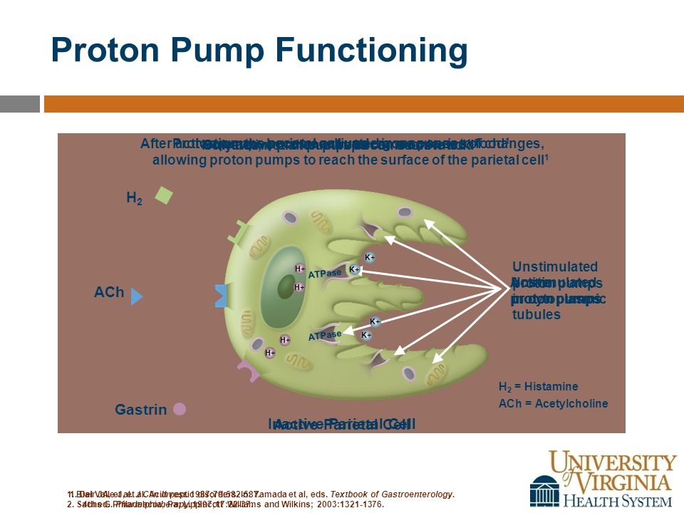 Proton Pump Functioning 1. Del Valle J, et al. Acid peptic disorders.