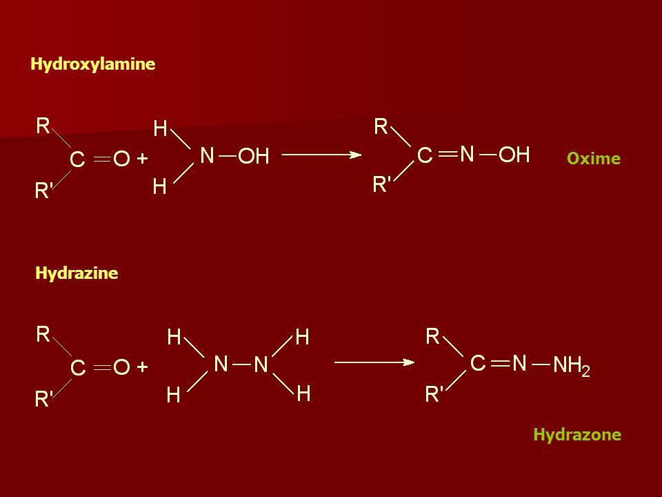 Hydroxylamine Hydrazine Hydrazone Oxime