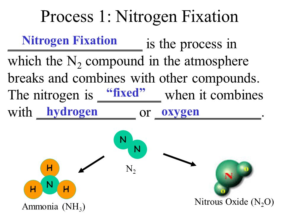 Process 1: Nitrogen Fixation ___________________ is the process in which the N 2 compound in the atmosphere breaks and combines with other compounds.