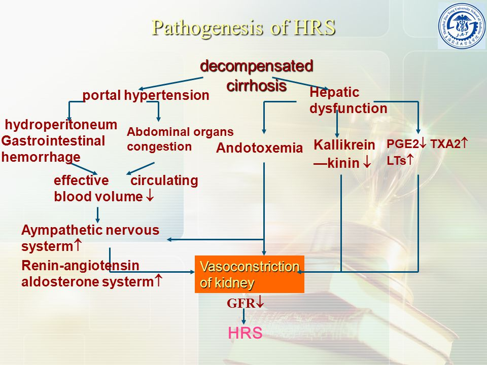 Pathogenesis of HRS decompensated cirrhosis Hepatic dysfunction portal hypertension hydroperitoneum Gastrointestinal hemorrhage Abdominal organs conge