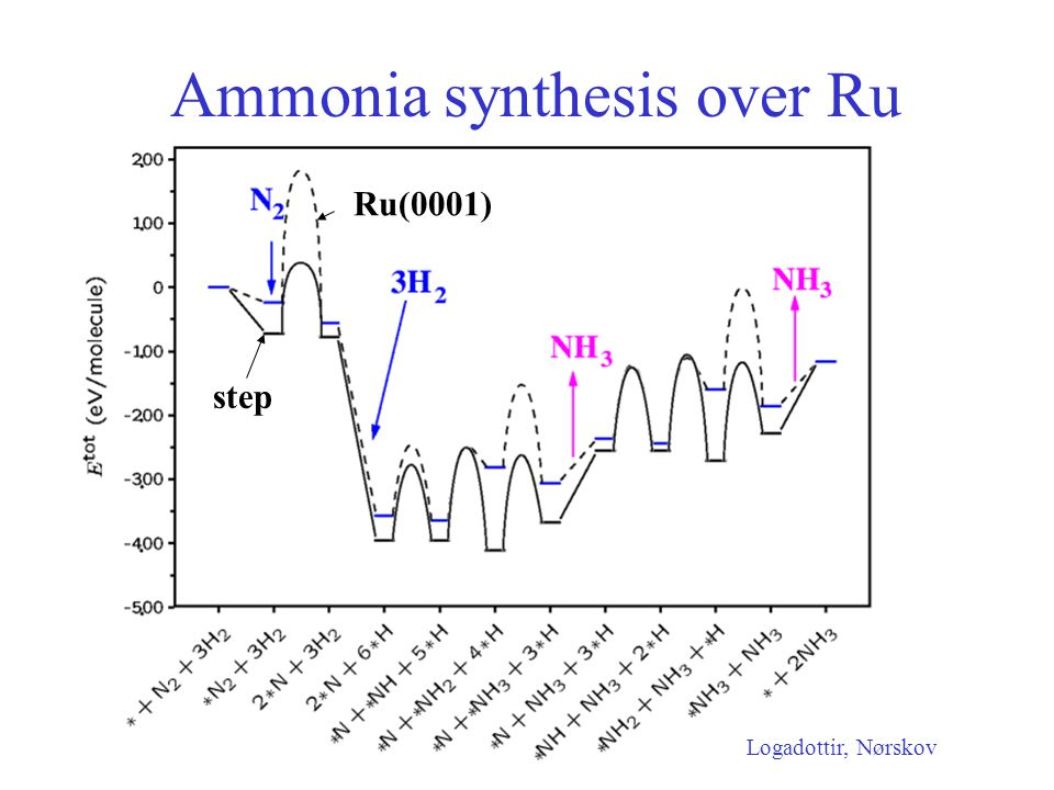 Ammonia synthesis over Ru Ru(0001) step Logadottir, Nørskov