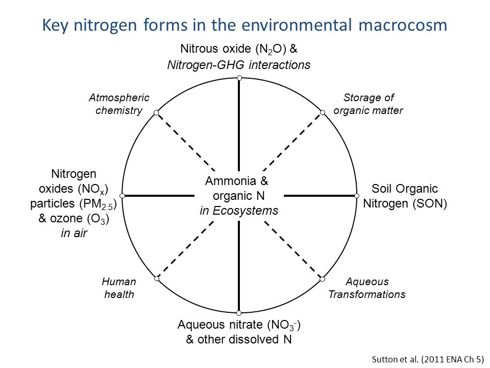 Key nitrogen forms in the environmental macrocosm Nitrous oxide (N 2 O) & Nitrogen-GHG interactions Nitrogen oxides (NO x ) particles (PM 2.5 ) & ozone (O 3 ) in air Soil Organic Nitrogen (SON) Aqueous nitrate (NO 3 - ) & other dissolved N Ammonia & organic N in Ecosystems Storage of organic matter Human health Atmospheric chemistry Aqueous Transformations Sutton et al.