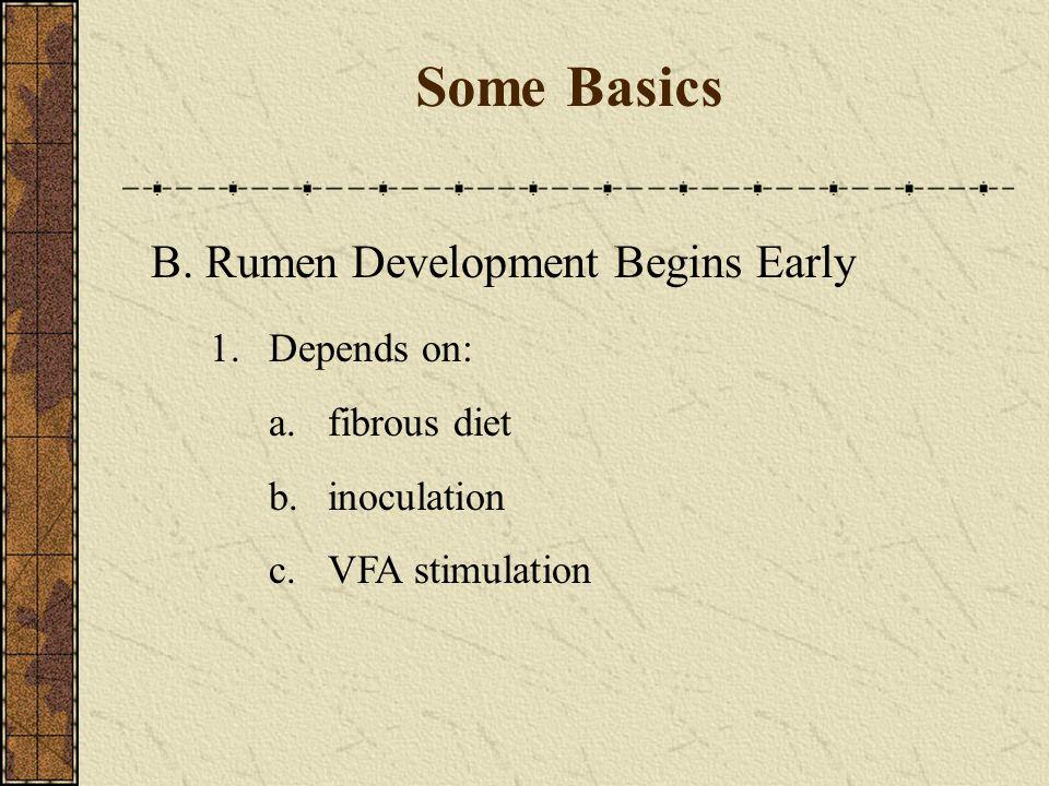 B. Rumen Development Begins Early 1.Depends on: a.fibrous diet b.inoculation c.VFA stimulation Some Basics