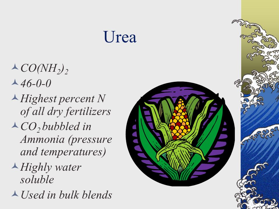 Urea CO(NH 2 ) 2 46-0-0 Highest percent N of all dry fertilizers CO 2 bubbled in Ammonia (pressure and temperatures) Highly water soluble Used in bulk blends