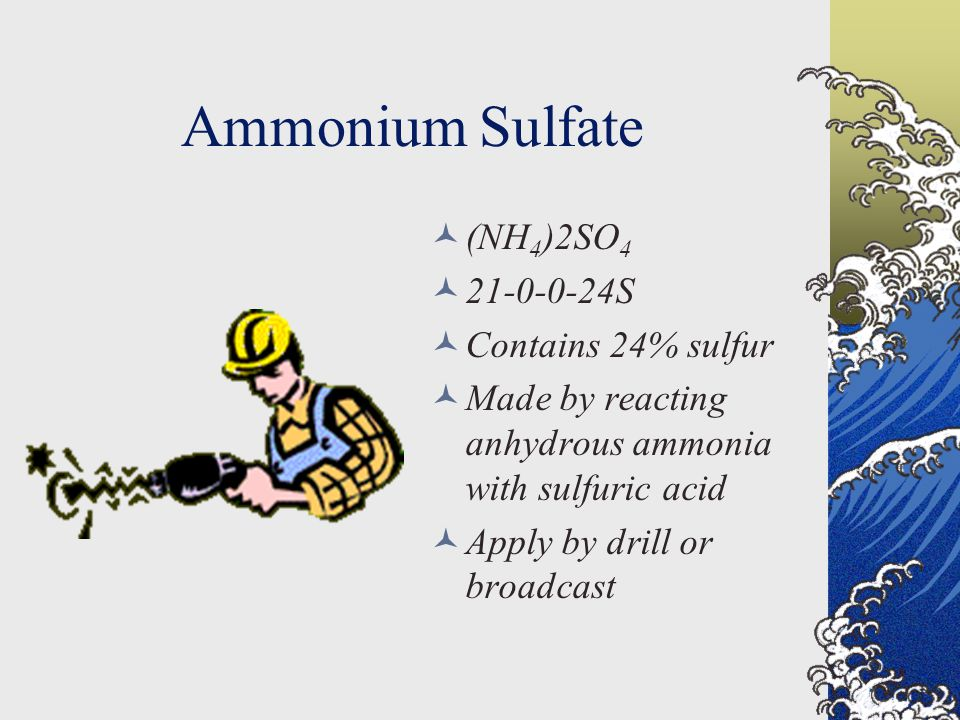 Ammonium Sulfate (NH 4 )2SO 4 21-0-0-24S Contains 24% sulfur Made by reacting anhydrous ammonia with sulfuric acid Apply by drill or broadcast