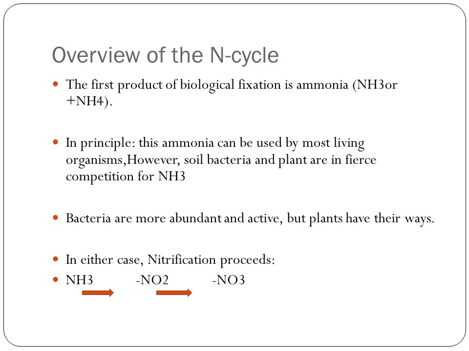 Plants and many bacteria can also reduce nitrate and nitrite ammonia (reductases).