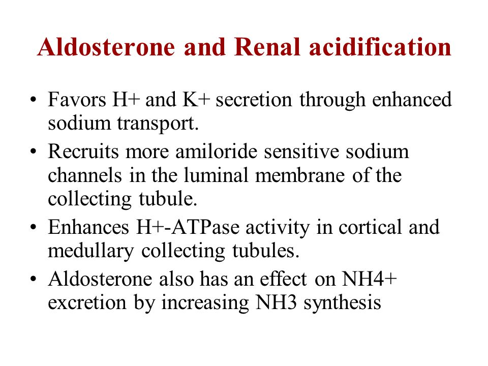 Aldosterone and Renal acidification Favors H+ and K+ secretion through enhanced sodium transport. Recruits more amiloride sensitive sodium channels in