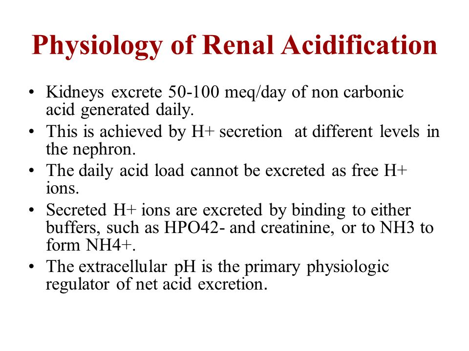 Physiology of Renal Acidification Kidneys excrete 50-100 meq/day of non carbonic acid generated daily. This is achieved by H+ secretion at different l