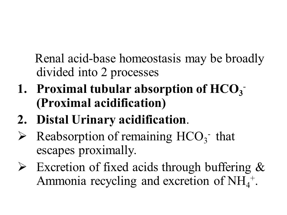 Beta-Intercalated Cells in contrast to the above have a luminal Cl - /HCO 3 - exchanger and a basolateral H + -ATPase.