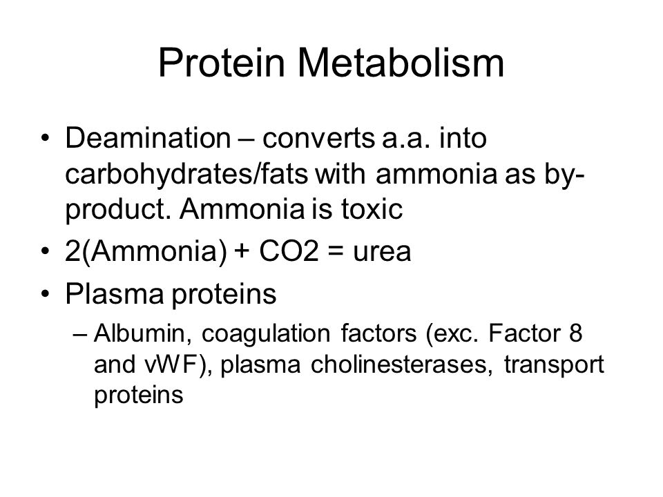 Protein Metabolism Deamination – converts a.a. into carbohydrates/fats with ammonia as by- product.