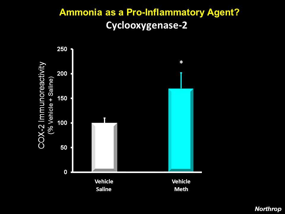Cyclooxygenase-2 Ammonia as a Pro-Inflammatory Agent.
