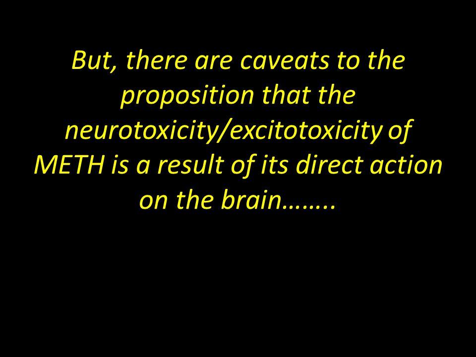 BBB Function in Cortex After Meth Vehicle Saline Lactulose Saline Lactulose Meth Vehicle Meth * # Quantification of FITC-Dextran Extravasation Vehicle+SalineLactulose+SalineVehicle+MethLactulose+Meth Northrop