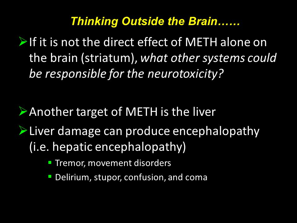  If it is not the direct effect of METH alone on the brain (striatum), what other systems could be responsible for the neurotoxicity.