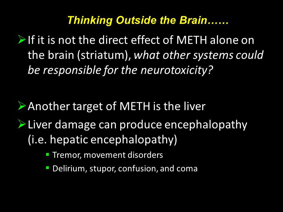 METH and Evidence of Hepatotoxicity Halpin