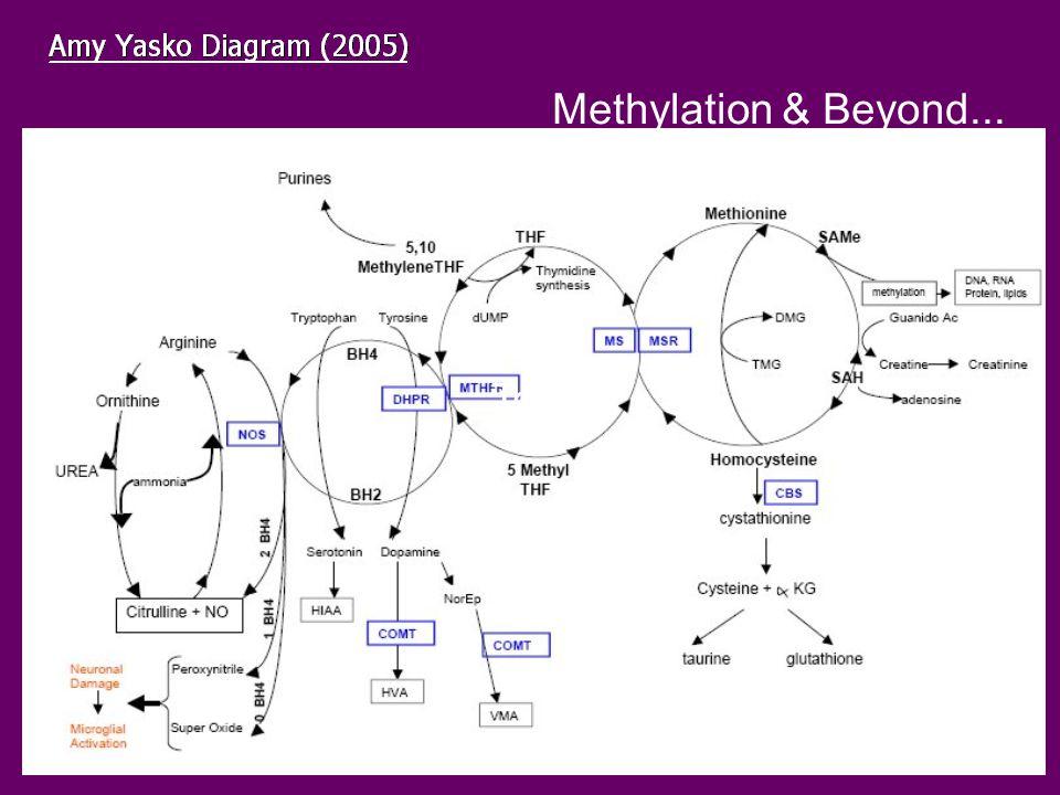 Text Methylation & Beyond...