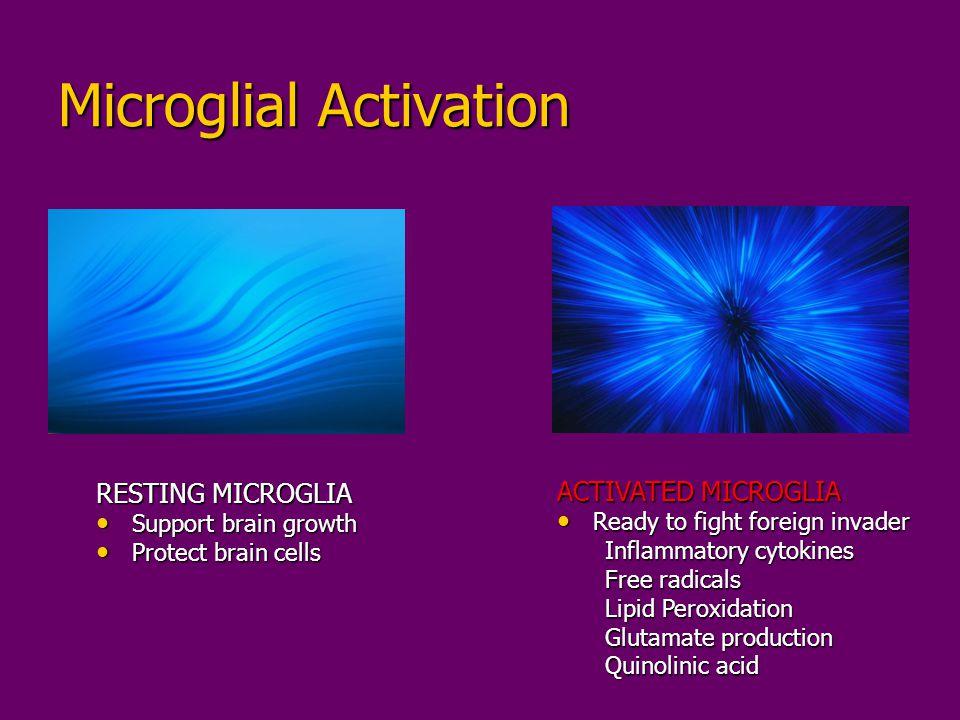 Microglial Activation RESTING MICROGLIA Support brain growth Support brain growth Protect brain cells Protect brain cells ACTIVATED MICROGLIA Ready to