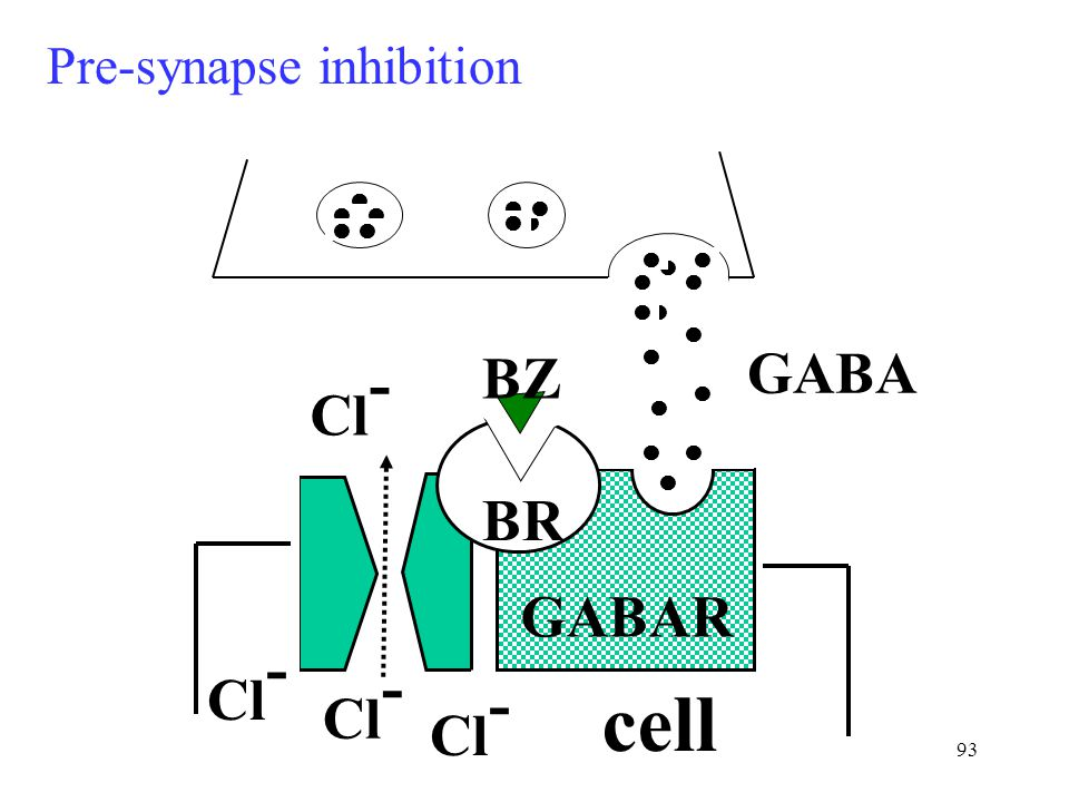 93 Cl - cell BR BZ GABAR GABA Cl - Pre-synapse inhibition