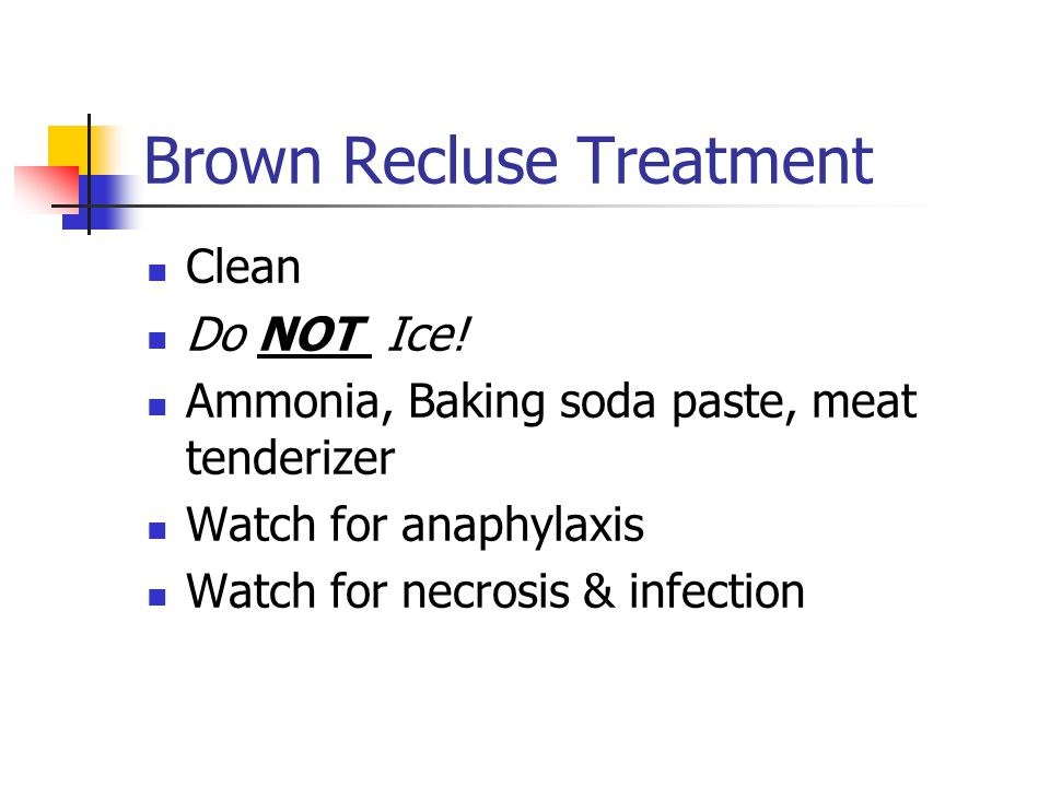 Brown Recluse Signs & Symptoms Very painful Red and swollen N & V Fever & chills Abdominal cramps & diarrhea Rarely anaphylaxis Necrosis (very common)