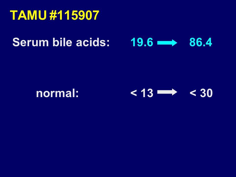 TAMU#115907 Serum bile acids:19.6 86.4 normal:< 13 < 30