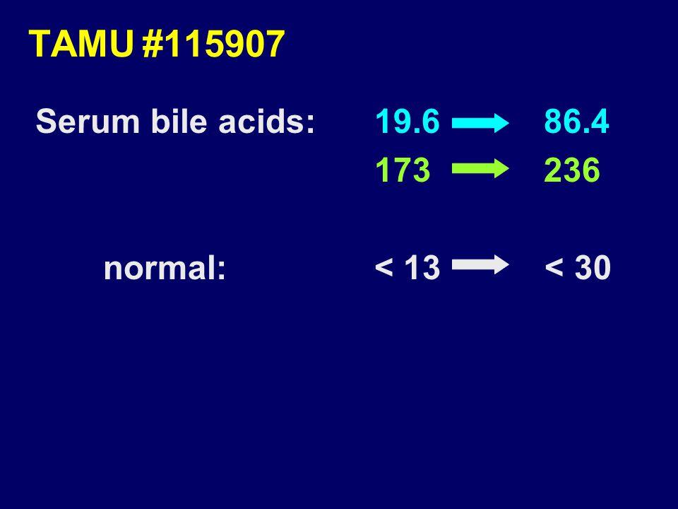 TAMU#115907 Serum bile acids:19.6 86.4 173 236 normal:< 13 < 30