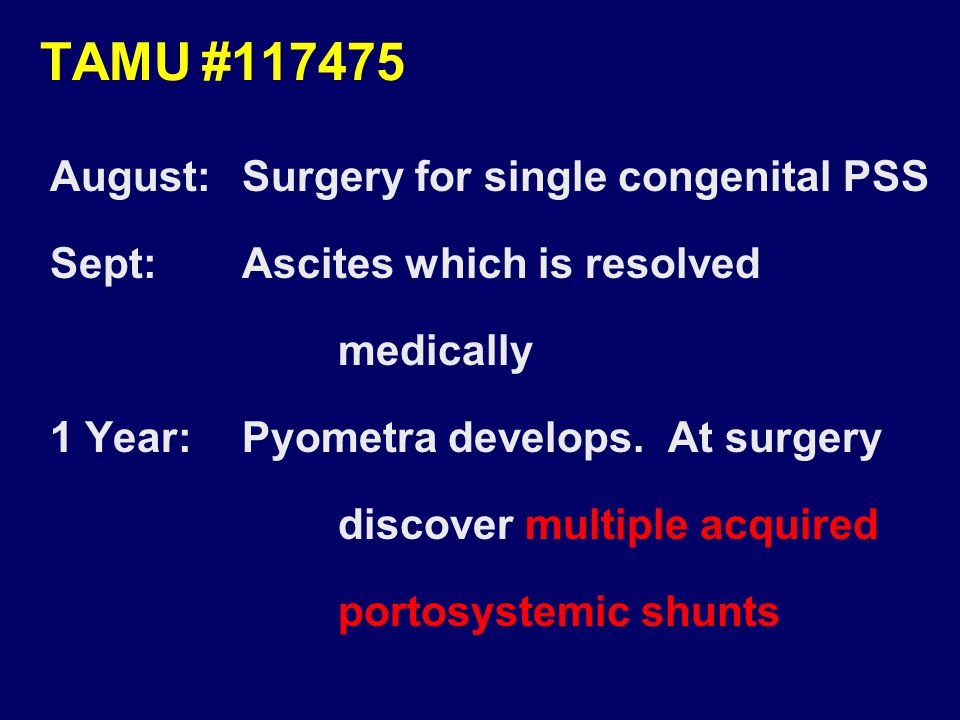 TAMU#117475 August:Surgery for single congenital PSS Sept:Ascites which is resolved medically 1 Year:Pyometra develops.