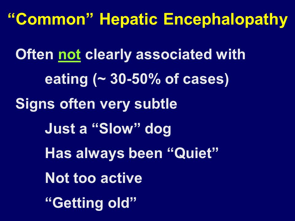 Common Hepatic Encephalopathy Often not clearly associated with eating (~ 30-50% of cases) Signs often very subtle Just a Slow dog Has always been Quiet Not too active Getting old