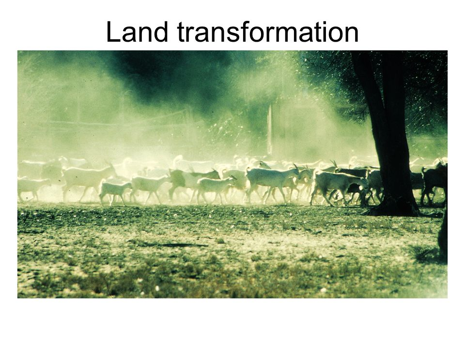 Land transformation