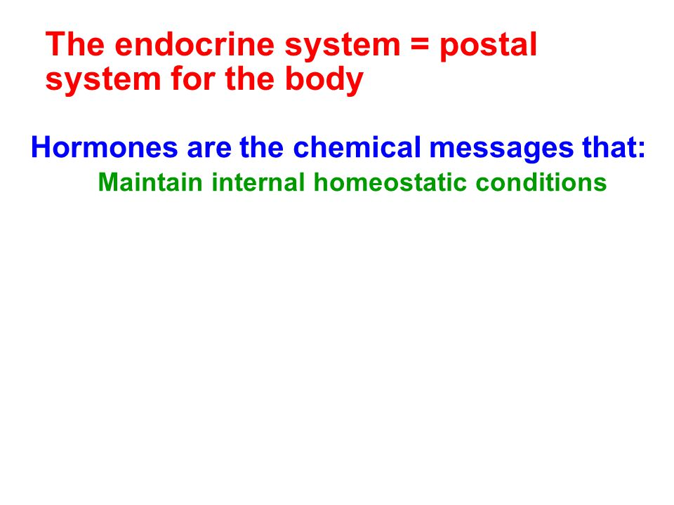 The endocrine system = postal system for the body Hormones are the chemical messages that: Maintain internal homeostatic conditions Regulate growth, d