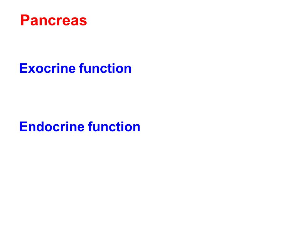 Pancreas Exocrine function Digestive secretions released into pancreatic duct to small intestines Endocrine function Islet cells Insulin Glucagon