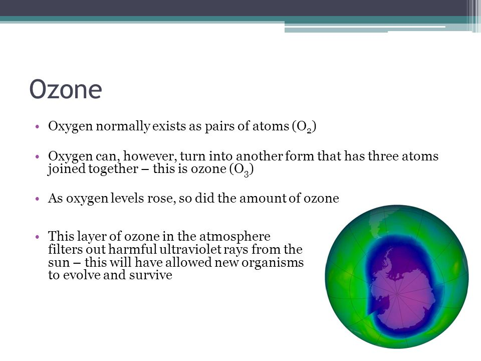 Ozone Oxygen normally exists as pairs of atoms (O 2 ) Oxygen can, however, turn into another form that has three atoms joined together – this is ozone (O 3 ) As oxygen levels rose, so did the amount of ozone This layer of ozone in the atmosphere filters out harmful ultraviolet rays from the sun – this will have allowed new organisms to evolve and survive