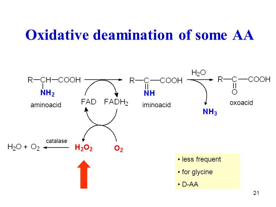 21 Oxidative deamination of some AA iminoacid catalase aminoacid oxoacid less frequent for glycine D-AA