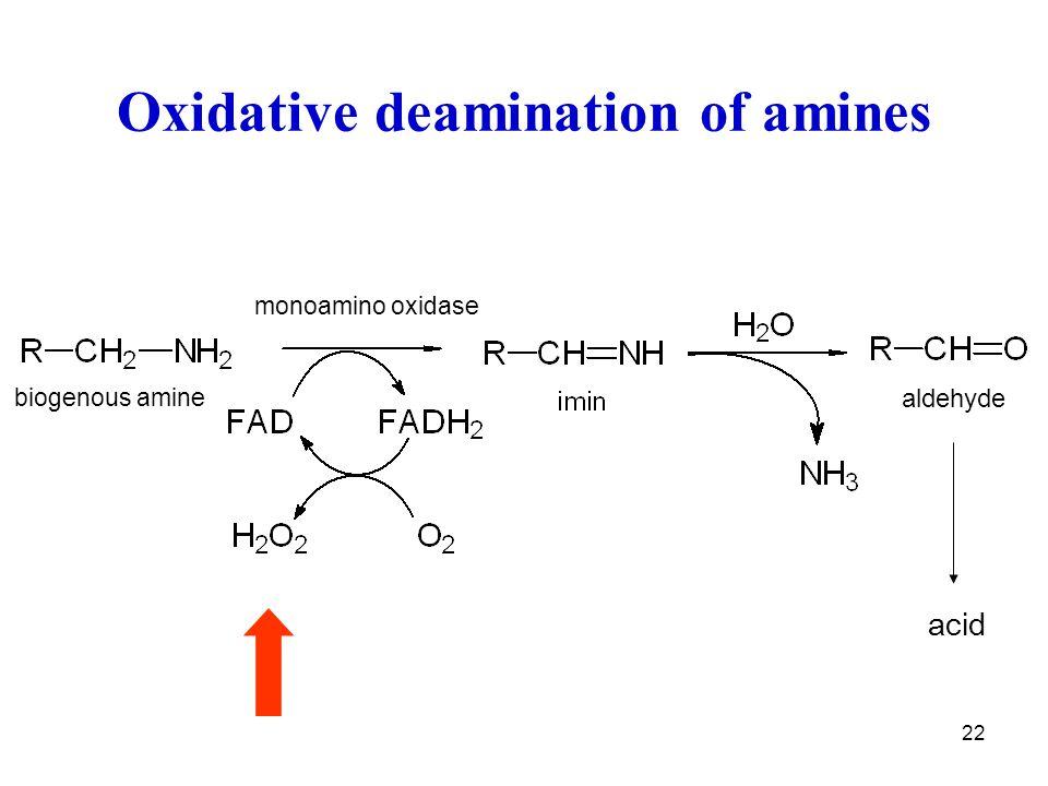 22 Oxidative deamination of amines acid aldehyde monoamino oxidase biogenous amine