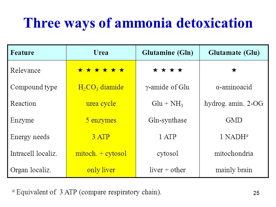 25 Three ways of ammonia detoxication FeatureUreaGlutamine (Gln)Glutamate (Glu) Relevance Compound type Reaction Enzyme Energy needs Intracell localiz