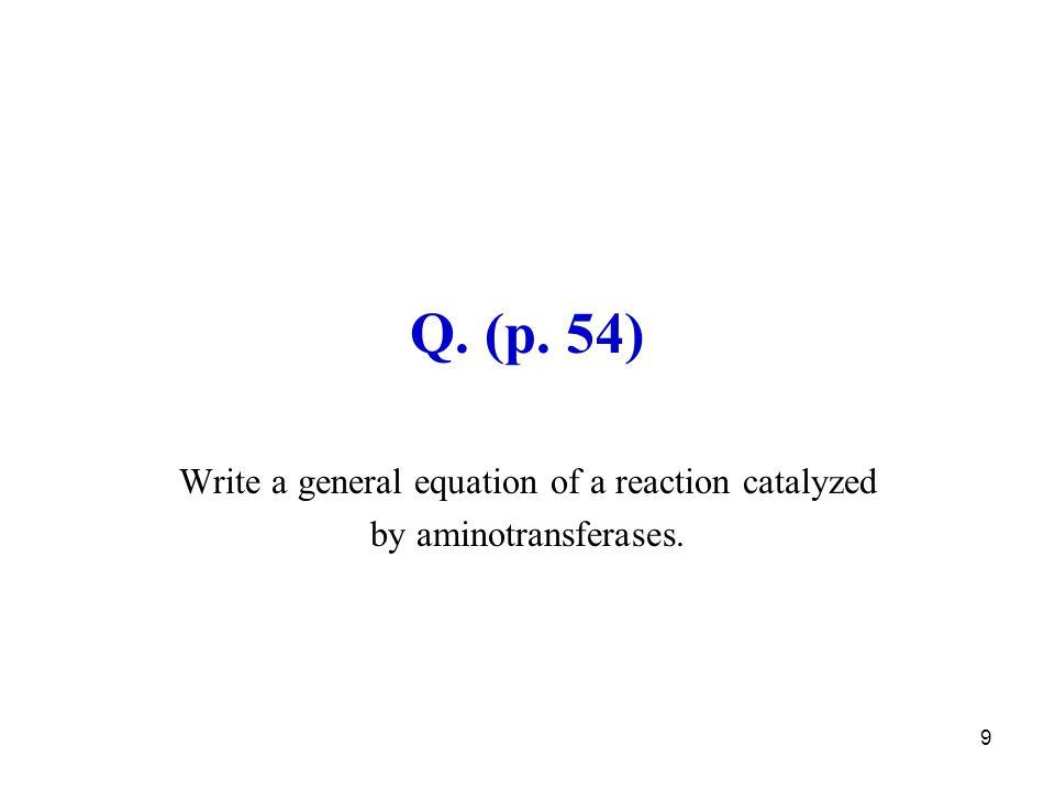 30 Glutamine synthesis requires ATP glutamine synthetase 2 nd way of NH 3 detoxication glutamate glutamine