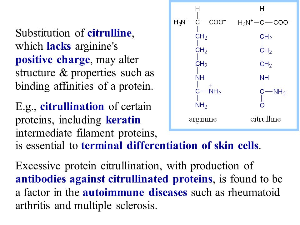 is essential to terminal differentiation of skin cells.