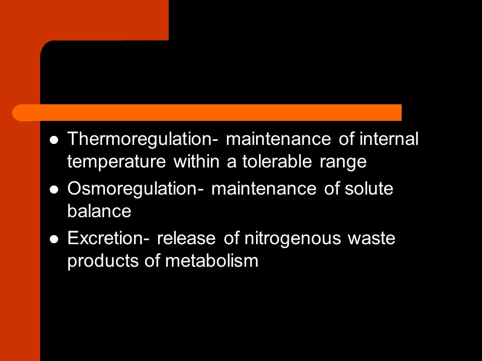 Thermoregulation- maintenance of internal temperature within a tolerable range Osmoregulation- maintenance of solute balance Excretion- release of nit