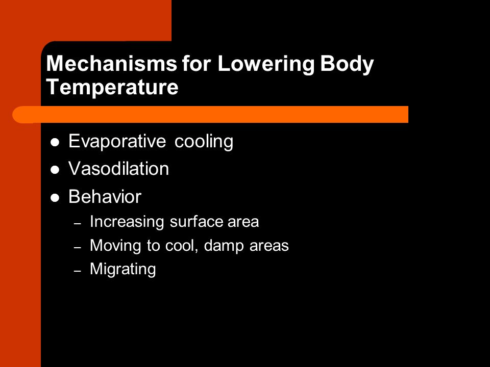 Mechanisms for Lowering Body Temperature Evaporative cooling Vasodilation Behavior – Increasing surface area – Moving to cool, damp areas – Migrating