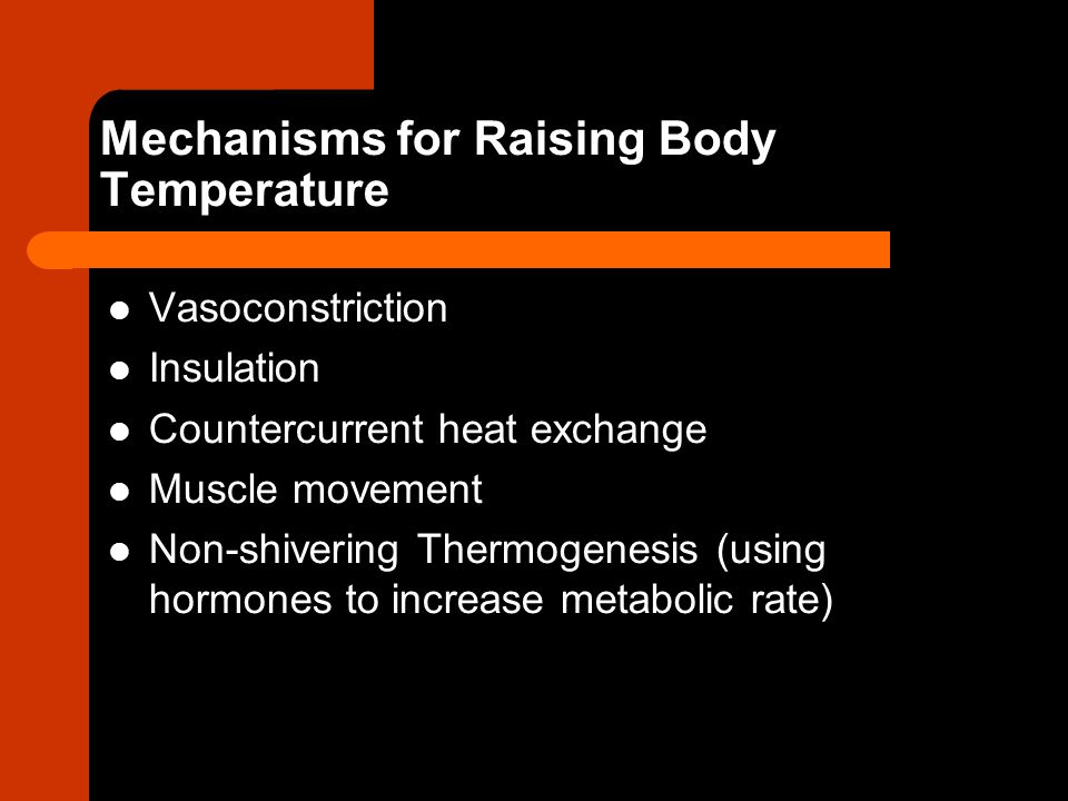 Mechanisms for Raising Body Temperature Vasoconstriction Insulation Countercurrent heat exchange Muscle movement Non-shivering Thermogenesis (using ho